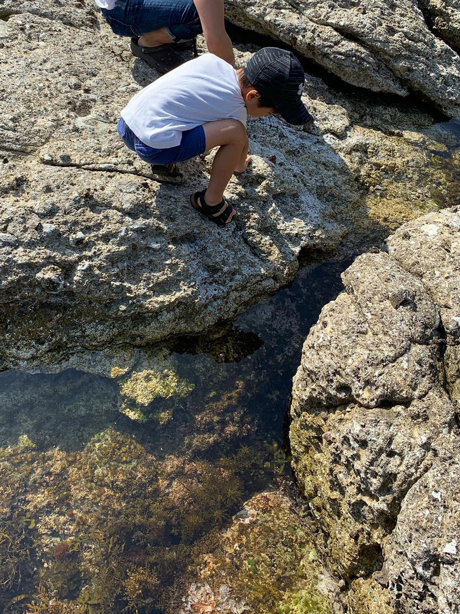 きれいな日本海で磯遊び!! | 櫂の詩BLOG櫂の詩BLOG